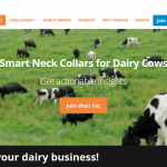 Zillionize Invests in Cowlar – Wearables for Dairy Cows
